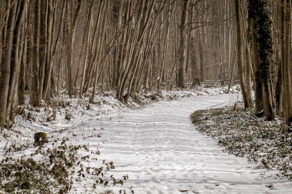 Kasteel Nieuwenhoven, Sint-Truiden, maart 2018, sneeuw.