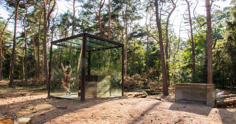 Klankenbos in Pelt: indrukwekkende geluiden en opmerkelijke stilte