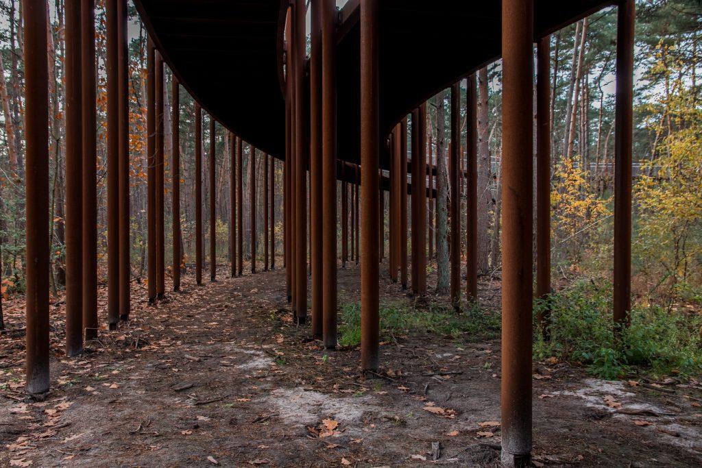 Fietsen door de bomen. Visit Limburg.