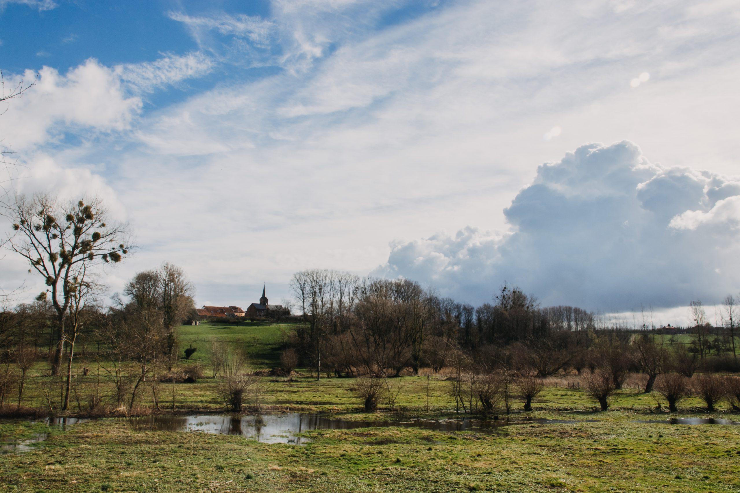 Blogwandeling Zammelen: de lente in zicht
