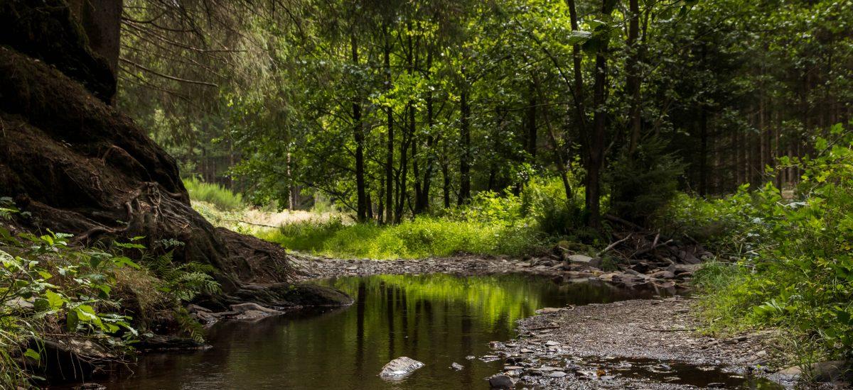 """Wibrin: afslag """"jeugd"""", richting een mooie rivier"""