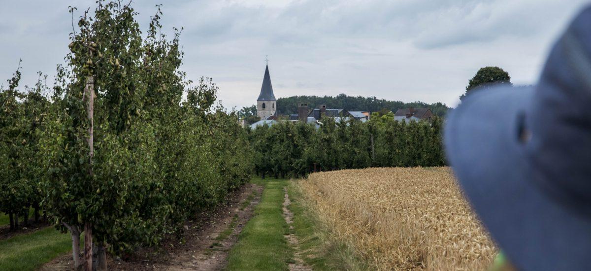 Streek-GR Haspengouw #3: poëzie in Alken
