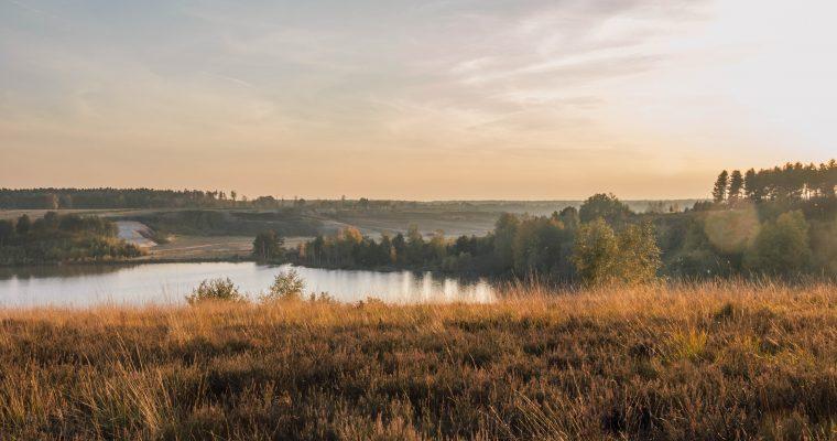 Mechelse Heide: wandelen en genieten van een divers landschap