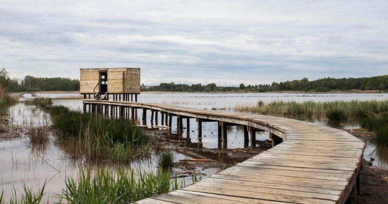 Tijdelijke wandeling van 10km: vanaf Runkelen in een lus rond het Vinne